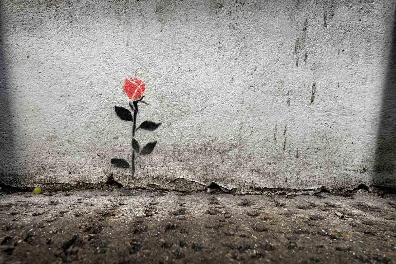 Red rose stencil graffiti on a wall in Brick Lane, London